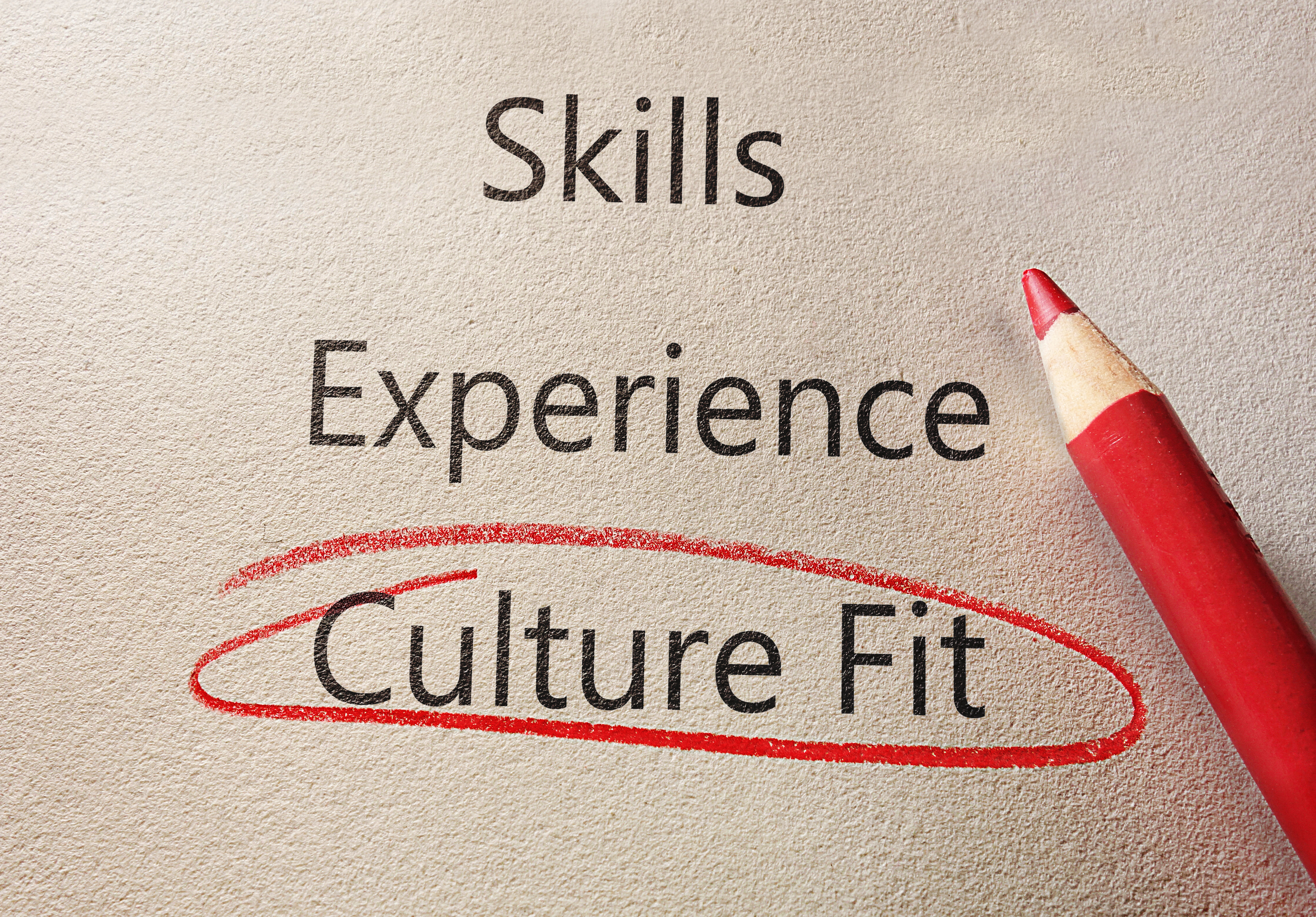 Business Cultural Fit for TMS Integrator Success