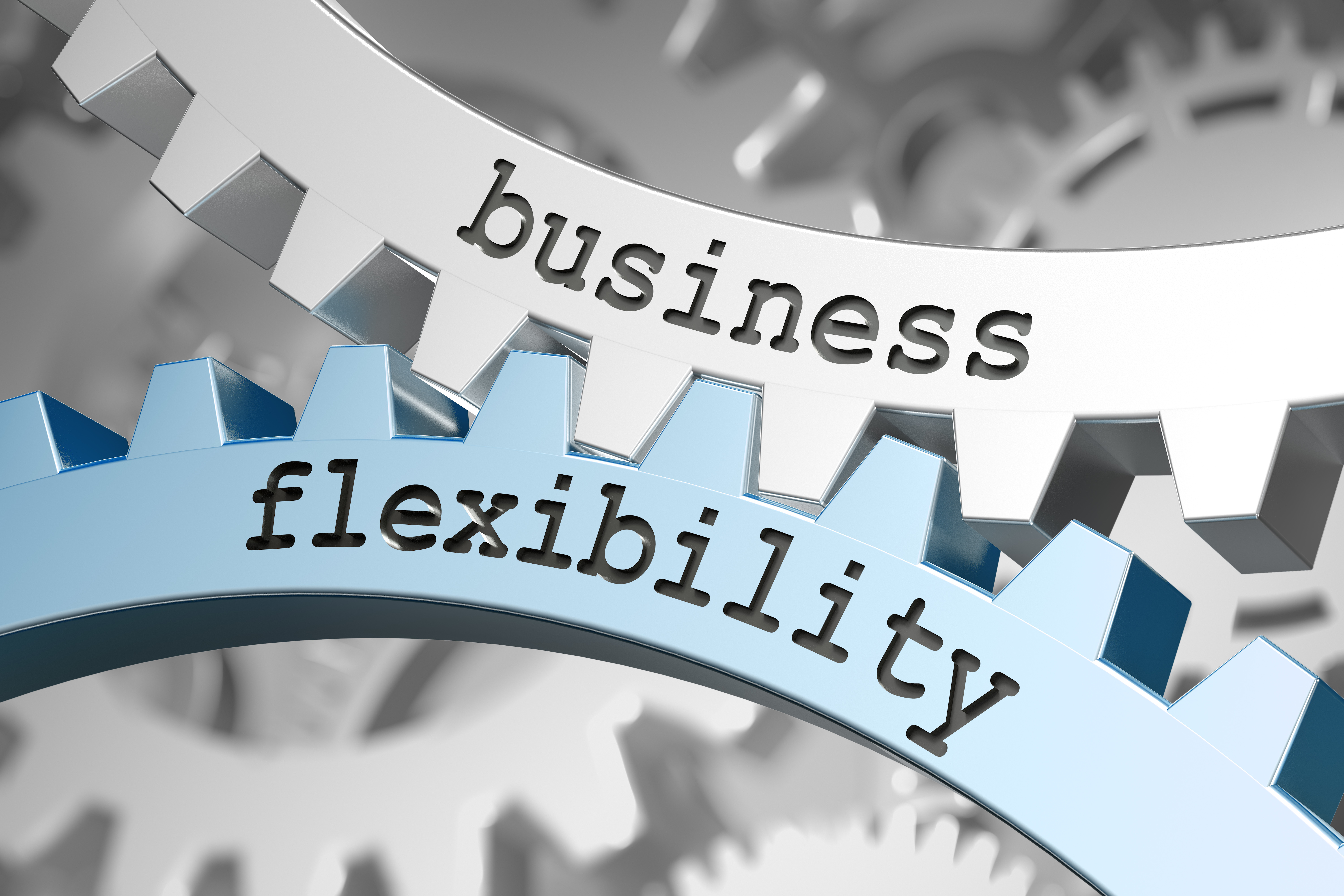 business flexibility